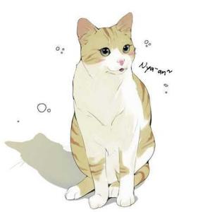 Kittyyyyyyyyyyyyy!~