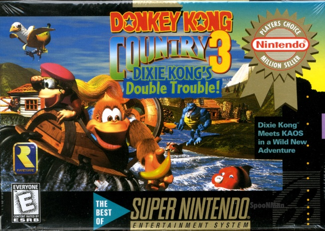 dkc3 cover